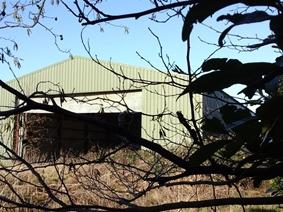 at Wayland Farm,  Bevis Lane, Wisbech St. Mary, WISBECH
