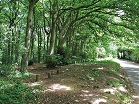 Stinchcombe Hill Road, DURSLEY
