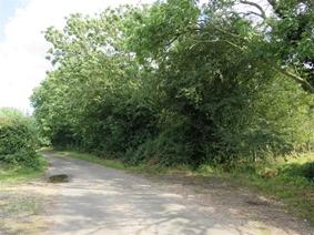 School Road, Beetley, DEREHAM