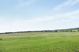 Land, Wheatley Hill, Durham