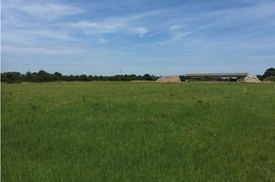 Mead Close, Buxton, Norwich