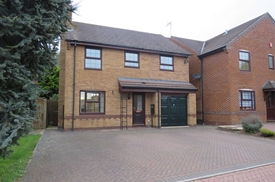 Sorrel Drive, Rugby