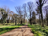 Littlewood, Drayton, NORWICH Photo 13