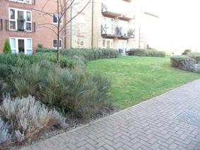 Sutton Court, Cranemead, Ware