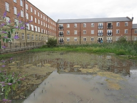 Eyres Mill Side, LEEDS